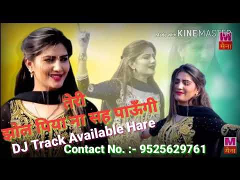 Teri Jhol Piya Na Sah Paungi (Sapna Choudhary) Dj Full Song