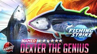 【釣魚大亨 Fishing Strike】Named Fish Dexter the genius Atlantic bluefin tuna NorthSea
