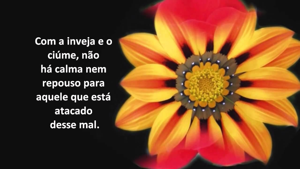 Mensagens E Frases De Amor: Frases Espíritas De Amor E