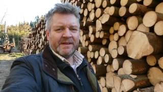 Kubikfabriken - slutavverkning vid 58 års ålder