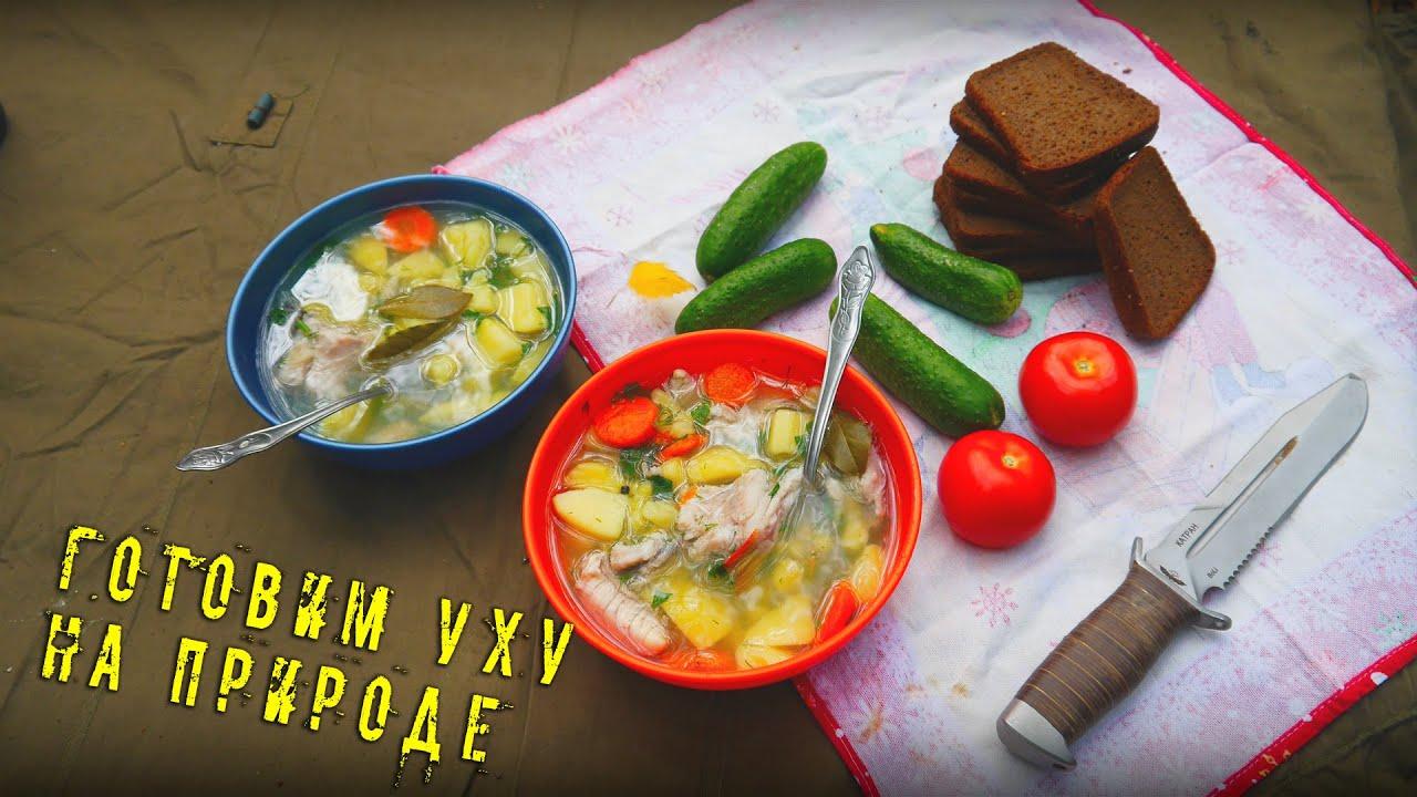 экономная кухня рецепты для бедных-хв6