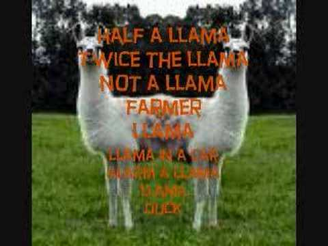The Llama Song w/ Lyrics
