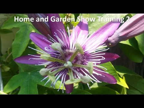 Home and Garden Show Training 2