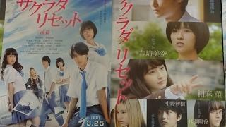 サクラダリセット 前篇 (2017) 映画チラシ 2017年3月25日公開 シェアOK ...