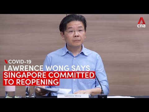 COVID-19 task force committed to reopening Singapore, despite new restrictions: Lawrence Wong