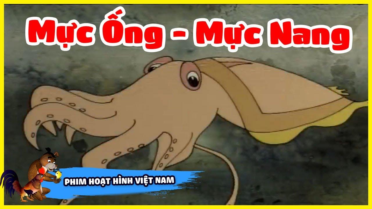 Xem Phim Hoạt Hình Hay  - Mực Ống Và Mực Nang    Phim Hoạt Hình Việt Nam