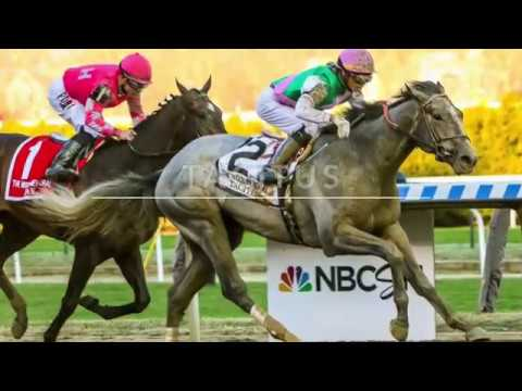 2019 Belmont Stakes: Saturday Odds, The Bets You Should Make, And Tacitus' Battle With Distance