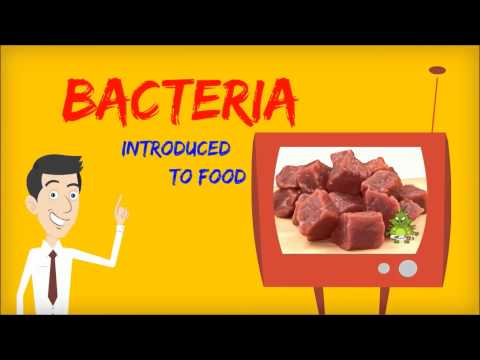 BACTERIAL GROWTH PHASE