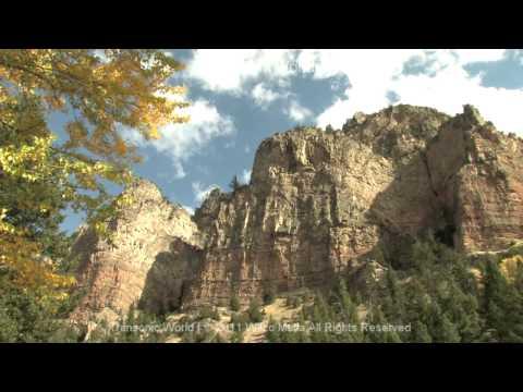 Transonic World   Original Score By Wilco Matla