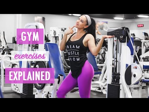 FULL BODY WORKOUT | BEGINNER GYM EXERCISES EXPLAINED