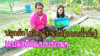 ปลูกผักไฮโดรโปนิกส์(แบบน้ำนิ่ง) แปลงผักแบบบ้านๆ สวนตาแสง เกษตรบ้านหนองคู