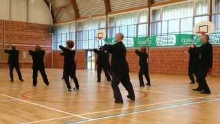 tai chi yang  forme 2   ( franck ferriere)