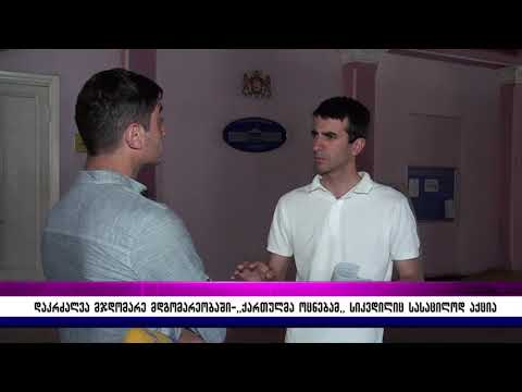 report from Gori