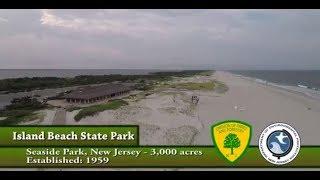 Island Beach State Park (phish)