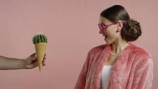 Cactus Cone Gag Stock Video