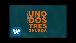 Скачать Anis Don Demina Uno Dos Tres Shurda Official Lyric Video