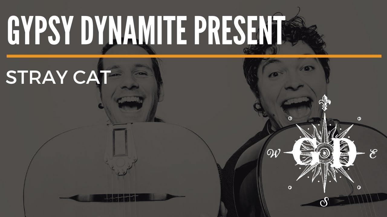 Gypsy Dynamite Present - Stray Cat