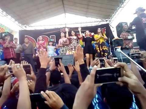 Orkes mantub new pallapa tawuran sorenk vs mendem