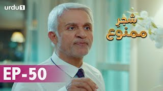 Shajar-e-Mamnu | Episode 50 | Turkish Drama  | Forbidden Fruit | Urdu Dubbing | 17 February 2021