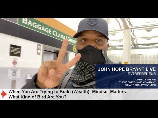 When You Are Trying to Build (Wealth): Mindset Matters. What Kind of Bird Are You?