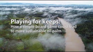 Playing for keeps: How a simple board game could lead to more sustainable oil palm