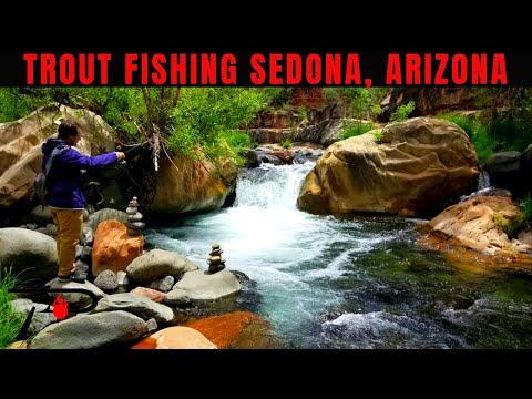 Trout Fishing Sedona