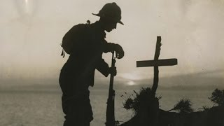 WW1: King's experts on the conflict that changed history