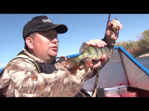 Рыбалка в Трехречье.