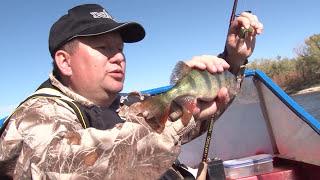 """Рыбалка в Трехречье. Рыбалка в Трехречье на базе """"Причал рыбака""""."""