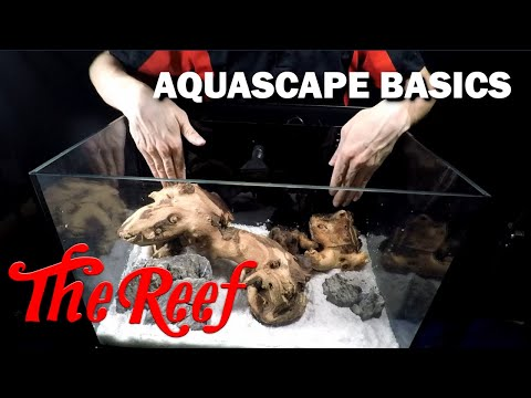 SETTING UP A FRESHWATER C-VUE AQUARIUM   PT 2: EQUIPMENT & HARDSCAPE   WE'RE GIVING AWAY THIS SETUP! from YouTube · Duration:  21 minutes 36 seconds