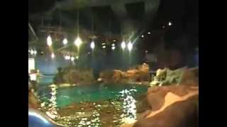 Ocean park without people tour Hong Kong 2013 China