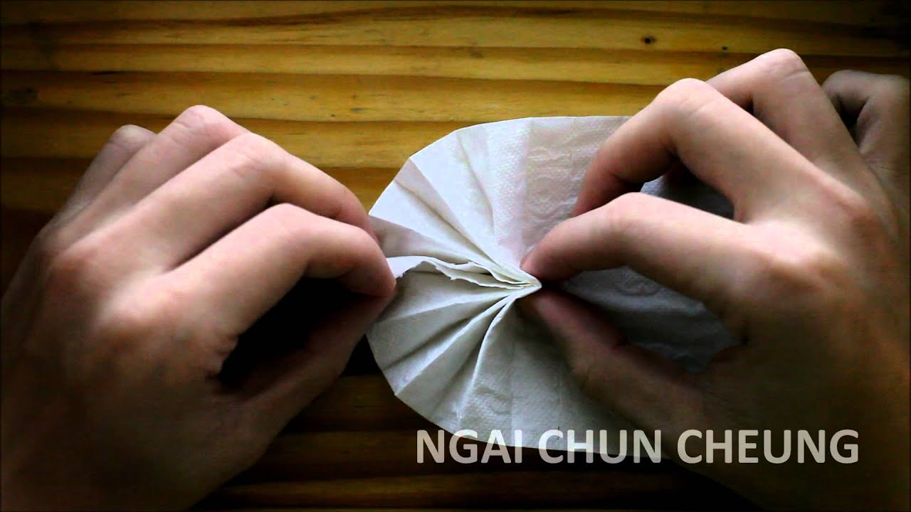 Toilet paper origami fan youtube toilet paper origami fan jeuxipadfo Image collections