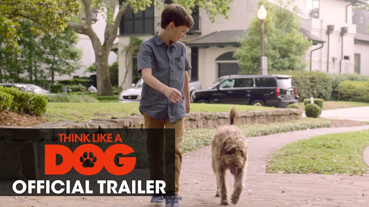 Think Like A Dog (2020 Movie) Official Trailer - Josh Duhamel, Megan Fox