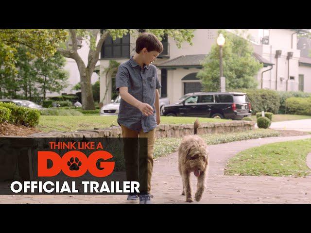 Think Like A Dog (2020 Movie) Official Trailer - Josh Duhamel, Megan Fox