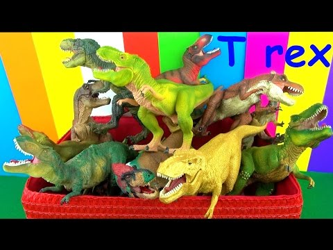 Tyrannosaurus Toy Collection Dinosaur Box - Learn about T rex in English