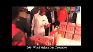 2014 World Malaria Day in Umuahia
