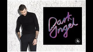 Robin Bengtsson Dark Angel Lyrics