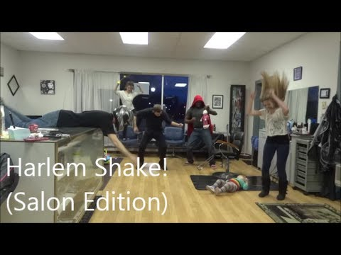 Harlem Shake! (Salon Edition)