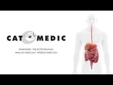 Menschliche Anatomie - Das Verdauungssystem - YouTube
