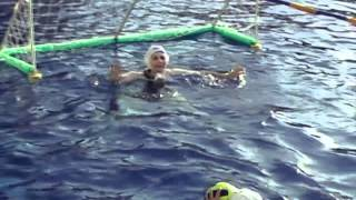 Водное поло в бассейне Чайка