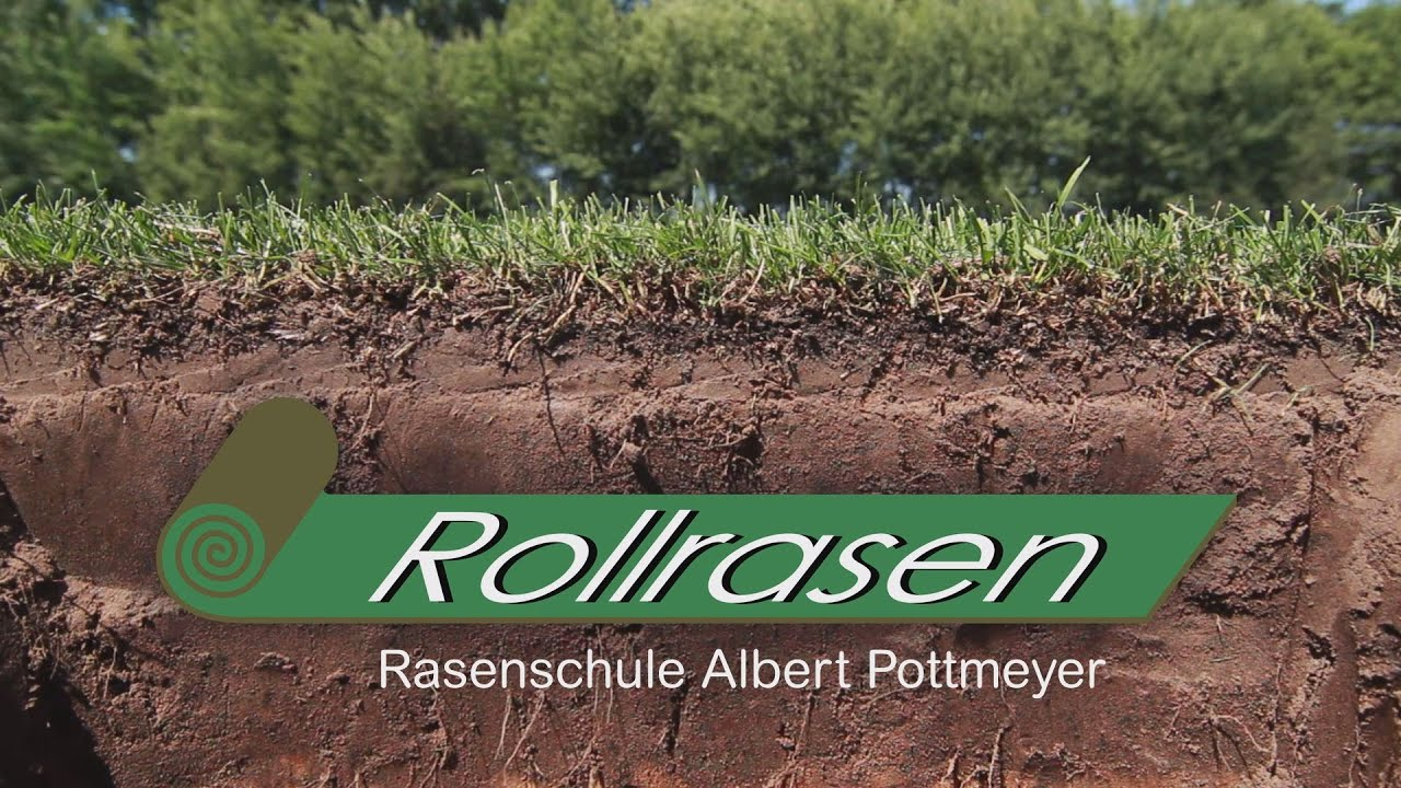 Rollrasen Lienen Rollrasen Rasenschule Albert Pottmeyer Home