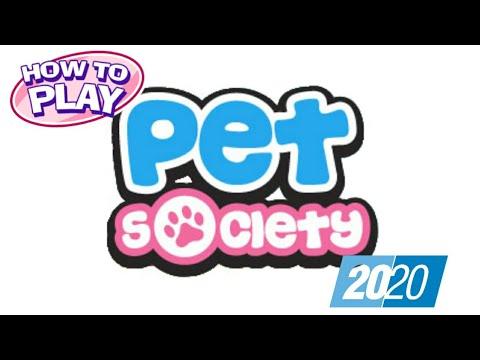Cara Bermain Pet Society Terbaru