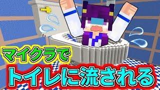 【Minecraft】まさかのマイクラでトイレに流される!?マインクラフトには超危険なトイレがあった!!【ゆっくり実況】【マインクラフトmod紹介】 thumbnail