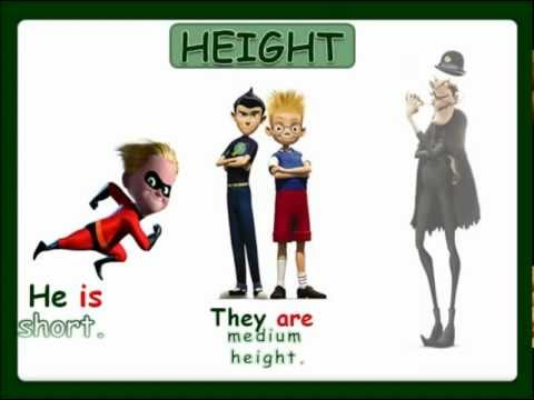 Physical Description: height and weight (with sound) - English Language