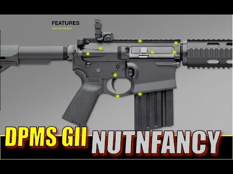 DPMS Gen II:  Expectations Fulfilled? Full Review