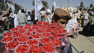 شاهد | مشاهد من الحياة اليومية في أفغانستان بعد عودة طالبان إلى السلطة…