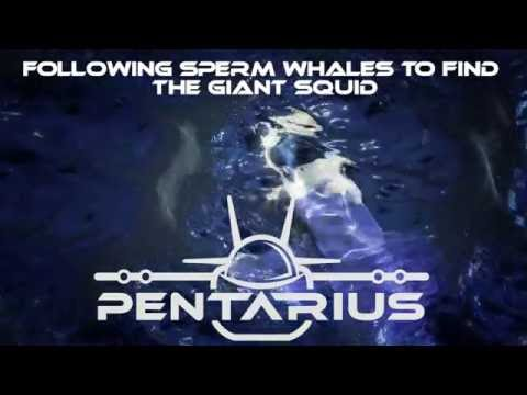 PENTARIUS: Following Sperm Whales to Find the Giant Squid - Giant Squid Expedition - Full Length