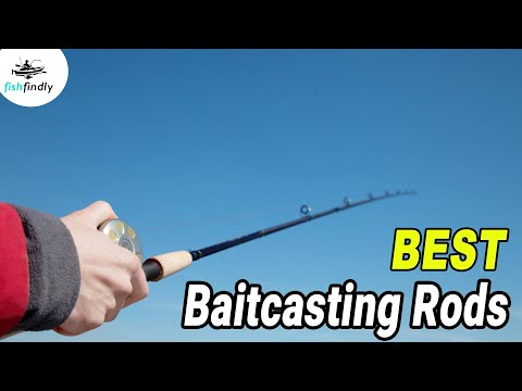 Best Baitcasting Rods In 2020 – Top Models After Thorough Tackle Test