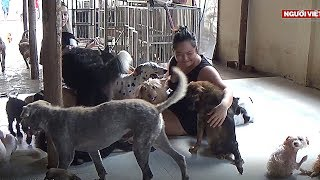 Nơi thương chó, mèo,… bậc nhất Sài Gòn