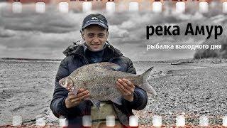 (клип) Рыбалка Выходного Дня  Верхогляд, Монгольский краснопёр, Жерех, Сом, Сазан, Лещ, Конь